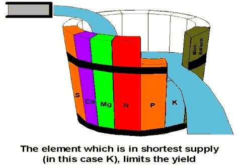 「木桶原則」著眼在服務的弱點上,是為了提高整體服務水準。