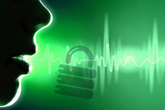 voice-recognition-security-id