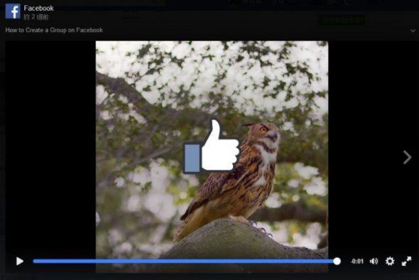 facebook-video-ad